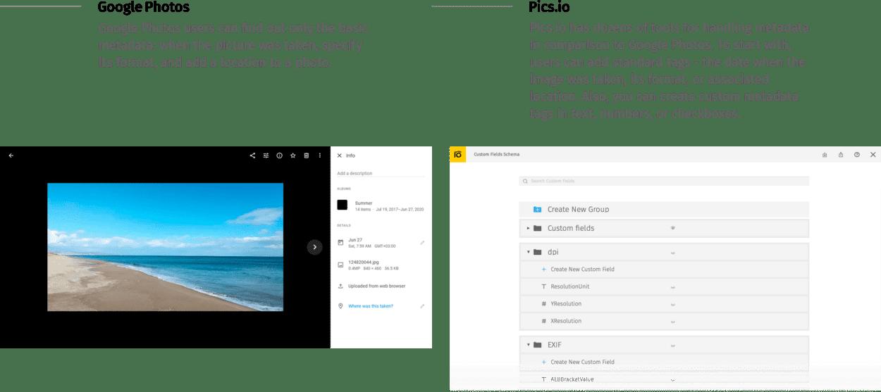 Metadata management Google Photos vs Pics.io