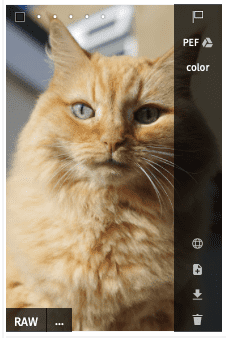 Convenient asset management for Pics.io users