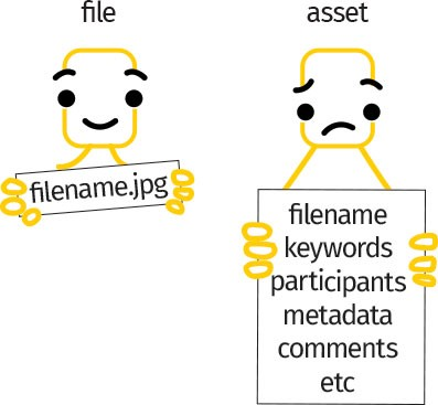 Difference between files and assets