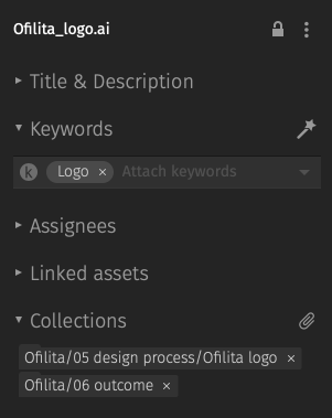 Editing file metadata in Pics.io