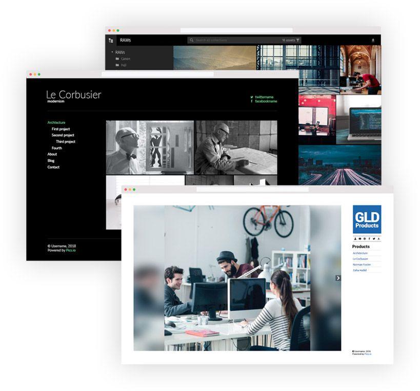 Public websites in Pics.io