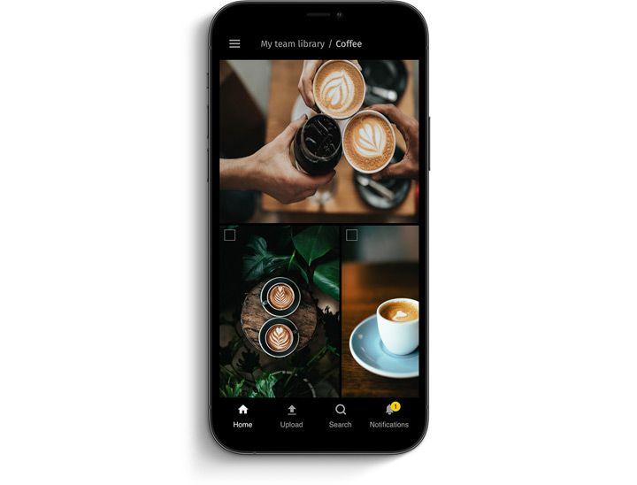 Pics.io mobile app