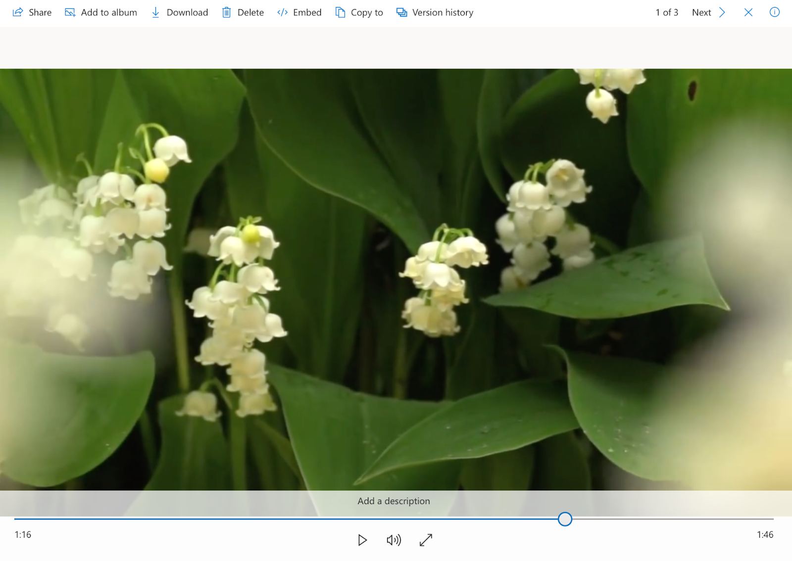 Play the video in OneDrive