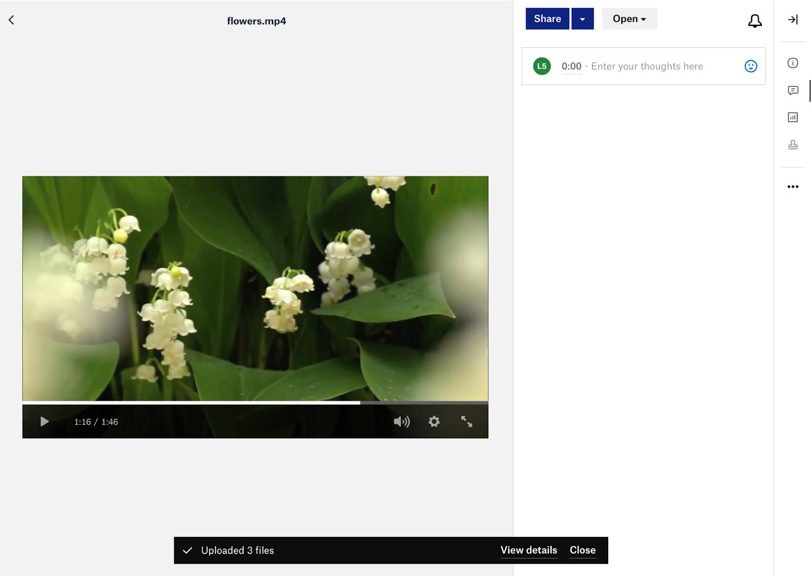 Run the video in Dropbox