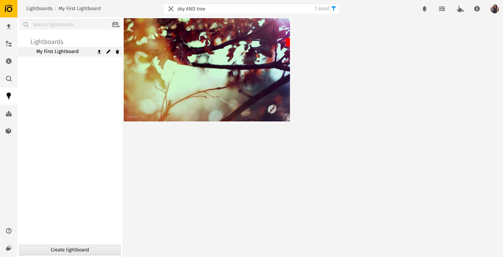 Boolean search at Pics.io